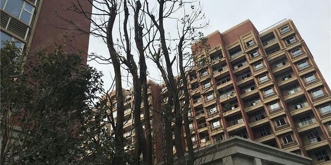 桩基+基坑工程:上海恒大佘山首府
